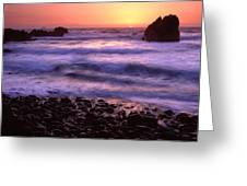 False Klamath Cove Greeting Card