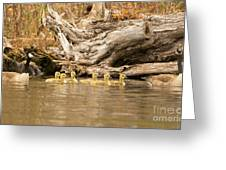 Family Affair Greeting Card