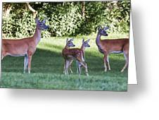 Family Of 4 Greeting Card