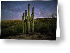 Family Of Saguaros  Greeting Card
