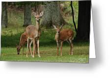 Family Walk Greeting Card