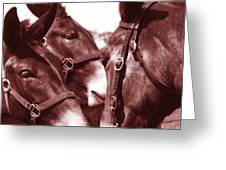 Fancy And The Mule Babies Greeting Card