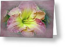 Fancy Daylily In Pink And Yellow Greeting Card
