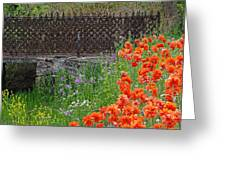 Fancy Foot Bridge And Poppies Greeting Card by Stephanie Calhoun