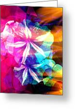 Fancy Pansy Candy Greeting Card