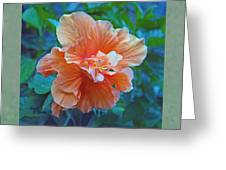 Fancy Peach Hibiscus Greeting Card