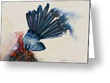 Fantail Flycatcher Greeting Card