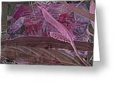 Fantasy African Violets And Peace Lily Pink, Red And Pink Greeting Card