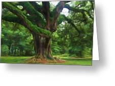 Fantasy Oak Greeting Card