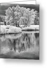 Fantasy Tree Reflection Greeting Card