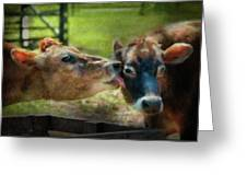 Farm - Cow - Let Mommy Clean That Greeting Card