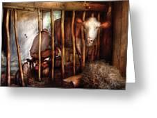 Farm - Cow - Milking Mabel Greeting Card