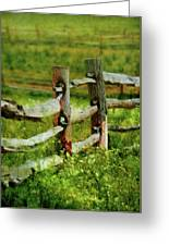 Farm - Fence - The Old Fence Post  Greeting Card