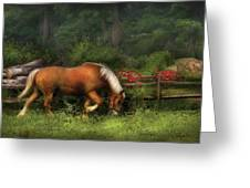 Farm - Horse - In The Meadow Greeting Card