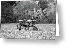 Farm All In  Corn Field Blsck And White Greeting Card