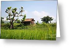 Farm And A Hut Greeting Card