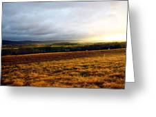 Farm Field Sunset Greeting Card