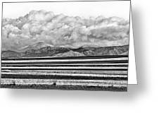 Farm Fields Meet The Rocky Mountains Greeting Card