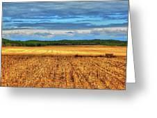 Golden Field Farm Li.ny Greeting Card