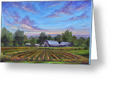 Farm On Glenn Bridge Greeting Card