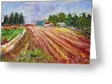 Farm Rows Greeting Card