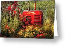 Farm - Tractor - A Pony Grazing Greeting Card by Mike Savad