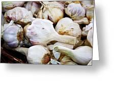 Farmers Market Garlic Greeting Card by Cathie Tyler