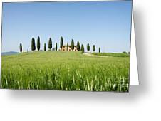Farmhouse With Cypress Trees And Crops In Tuscany Greeting Card