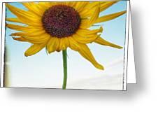 Farmlife Greeting Card