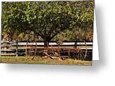 Farmtime Greeting Card