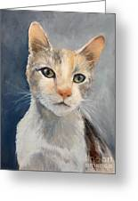 Farmyard Cat Greeting Card