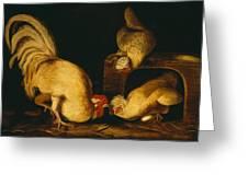 Farmyard Fowls Greeting Card