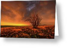 Fascinations - Warm Light And Rumbles Of Thunder In The Oklahoma Panhandle Greeting Card