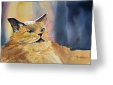 Fat Cat Greeting Card