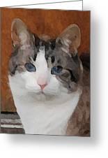 Fat Cats Of Ballard 3 Greeting Card