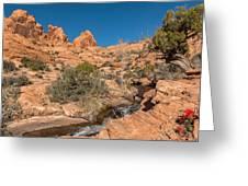 Faux Falls Trail Greeting Card