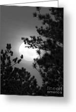 Favorite Full Moon Greeting Card