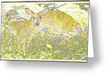Fawn Twins Digital Painting Greeting Card