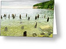 Fayette State Park Shoreline Greeting Card