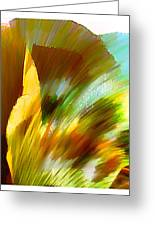 Feather Greeting Card by Anil Nene