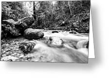 Feather Falls Stream Greeting Card