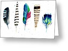 Feather Study Greeting Card