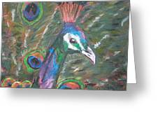 Feathered Splendor Greeting Card