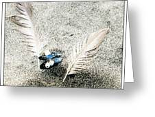 Feathers And Mussel Greeting Card
