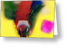 Feathers In Wine Glass Greeting Card