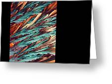 Feathers Of Crystal 2 Greeting Card