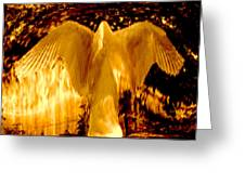 Feathers Of Light - Gold Greeting Card