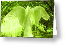 Feathers Of Light - Green Greeting Card