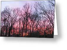 February At Twilight Greeting Card