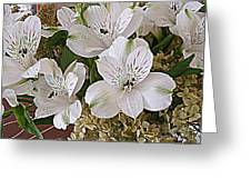 February Flowers Greeting Card
